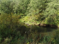 речка Руза