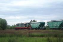 Маневровый тепловоз с 2 вагонами